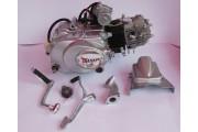 Двигатель Дельта/Альфа 110 см3 механика TMMP